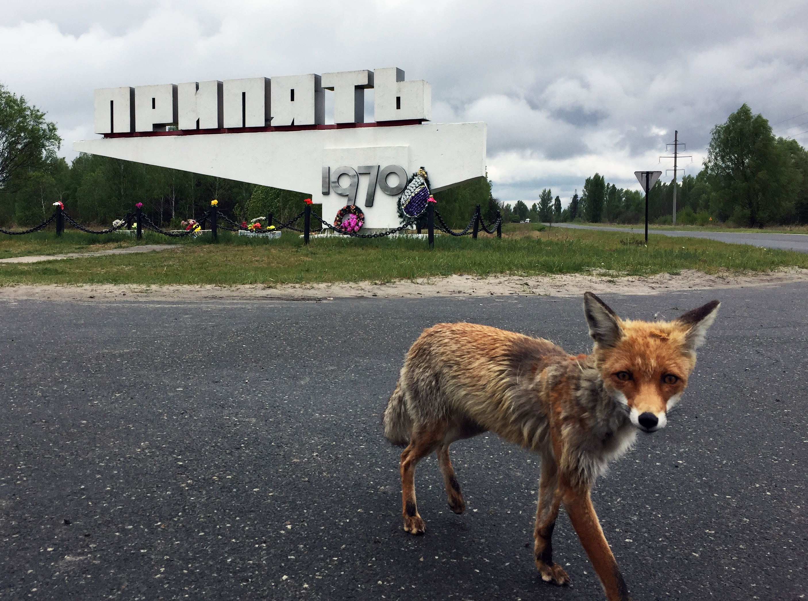 Visiting the Exclusion Zone – a day trip to Chernobyl